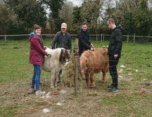 People we support spending time with shetland ponies