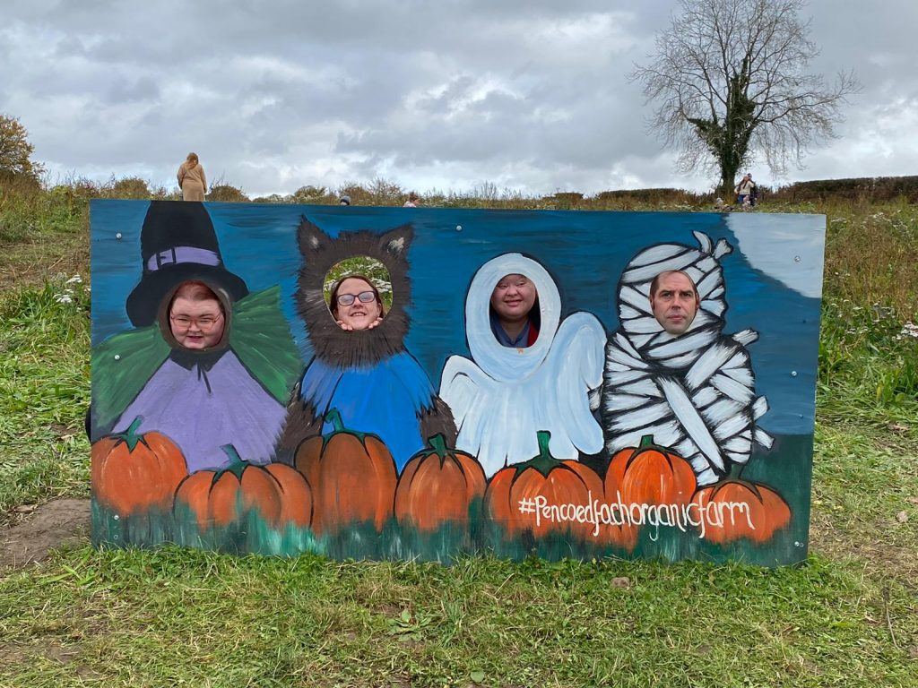 ty nydffa social care service day trip for halloween