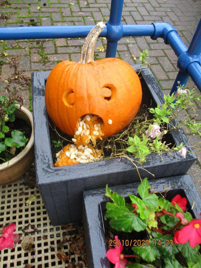 Tamarisk House halloween decorating